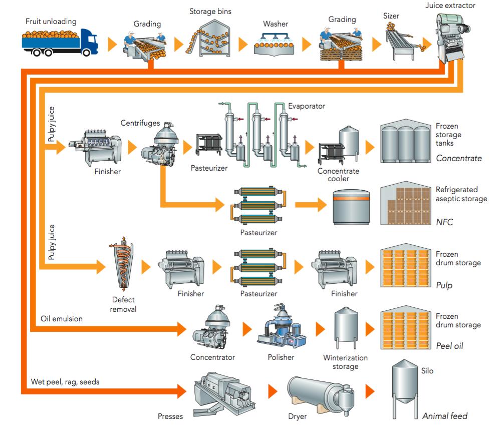 Fruit processing orange book zoom figure 51 flow chart nvjuhfo Choice Image